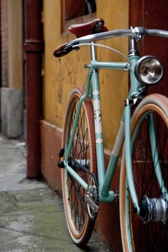 cycle14