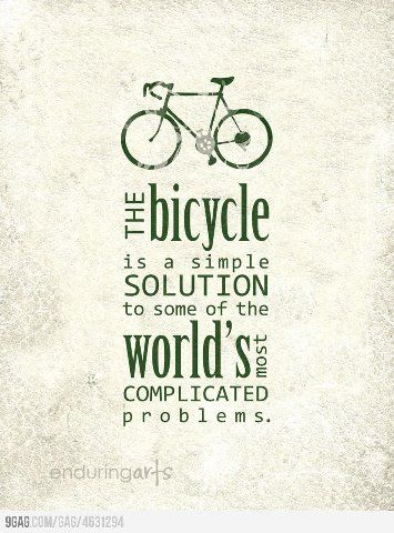 cycle7
