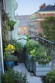 10 balcone