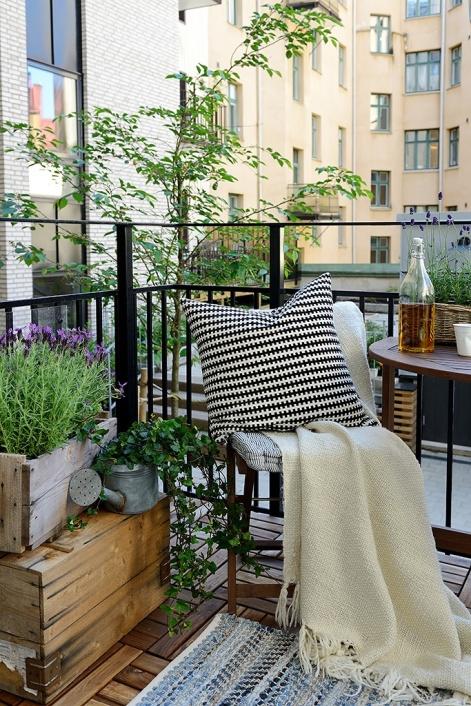 6 balcone